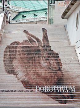 Albertina - Dürer