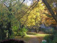 HerbstFensterBlick