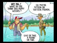 Fishing Funnies 5