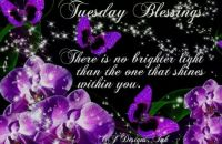 Tue blessings 4
