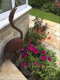 Flower Theme: Summer pots