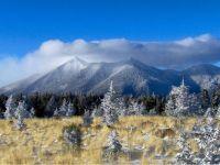 Light dusting of snow