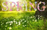 THEME ~ Spring is in the Air
