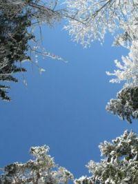 Blue skies and everything nice ... III.