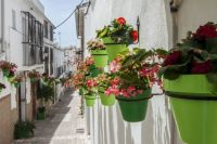 Flower Pots in Estepona