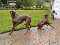 Bronze Greyhounds