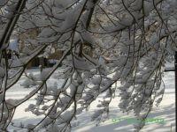 09 flanders winter storm 011
