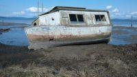 Shipwreck on Puget Sound