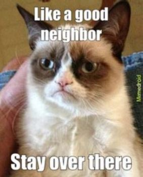 You're in Good Hands With.....Grumpy Cat