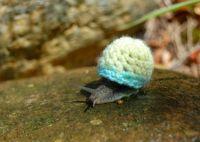Sartorial Snail
