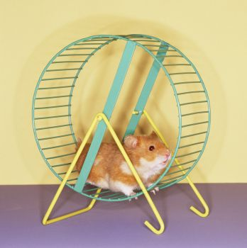 Theme, little pets: gerbil