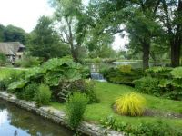 Beautiful garden in the Cotswolds, UK
