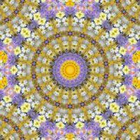 kaleidoscope 318 daisies medium