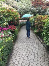 Strolling Butchart Gardens