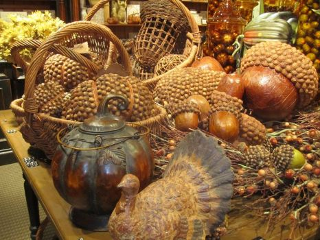 Acorns and a Turkey