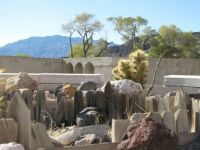 Death Valley 6--garden? at Scotty's Castle