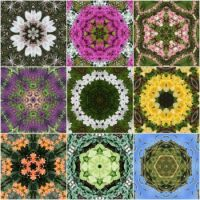 kaleidoscope 50 collage small