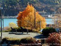 St Johns Newfoundland Canada