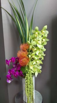 Happiness is….Orchid Wave !