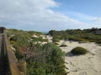 Kangaroo Island Dunes