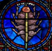 Chartres Cathedral - Zodiac windows - Cancer the crab
