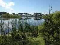St. Andrew's State Park, Gator Lake, PCB, FL