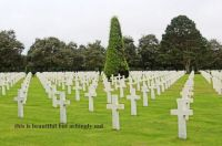 In honor of Memorial Day, 2021:  This is the American Cemetery in Normandy, France.  Details below.