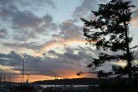 Port McNeill, Vancouver island