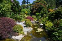 The Victoria BC Japanese Garden