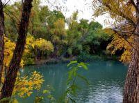 Verde River in Arizona