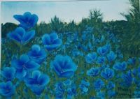 "my painting ""A Field of Blue"""
