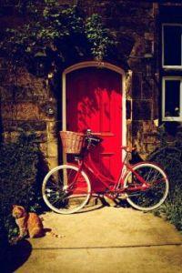 Matching door and bike.