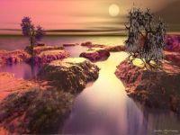 Shoreline Delight
