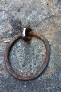 Curb horse tie