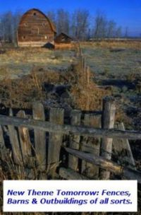 New Theme Tomorrow (Sunday) Fences, Barns & Outbuildings of all sorts! Enjoy!