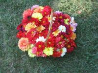 flower harvest...easy