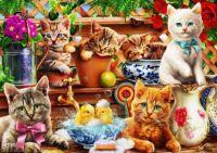 Garden Cats #2