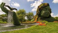 Amazing Gardens (15)