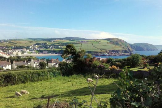 Port Erin Bay and out towards the Calf of Man from Bradda, Isle of Man