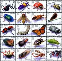 the only bugs you will catch me licking