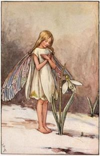 The Snowdrop Fairy (smaller size)