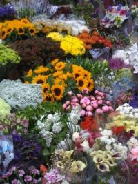 Flowers in Dublin Market
