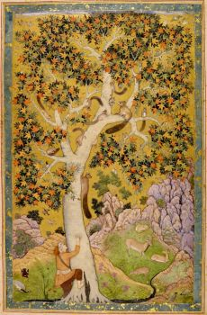 Abu'l_Hasan_Squirrels_in_a_Tree, art poster