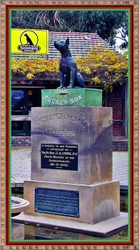 The Dog On The Tuckerbox.