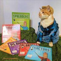 Cat Icon Game #85 - please identify
