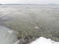 Sheets of Lake Ice