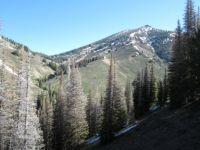 Yesterdays trail