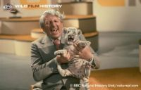Johnny Morris with a White Tiger cub in the studio.