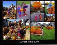 Harvest Time Collage
