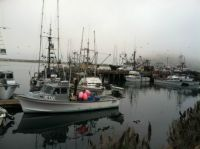 Foggy afternoon, Morro Bay CA